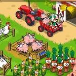Flower Farm Games